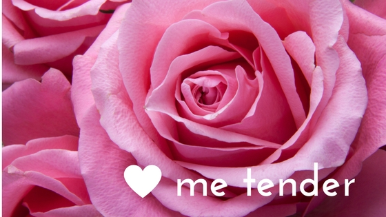 love me tender rose