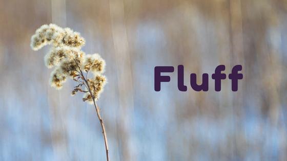 Canada goldenrod fluff