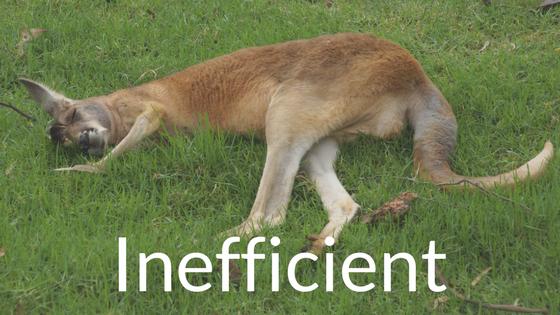 Inefficient kangaroo