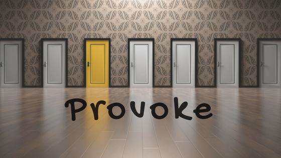 provoke doors