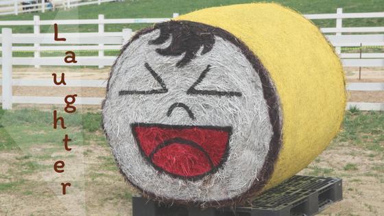 smilie haystack