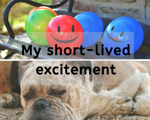 collage with happy balloons and bored dog