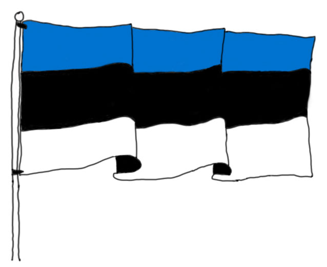 wavy Estonian flag